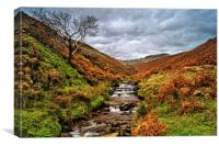 Fair Brook in Autumn, Canvas Print