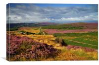 View From Burbage Rocks , Canvas Print