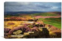 Burbage Rocks and Valley in Summer, Canvas Print