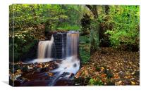 Upper Cut Wheel, Rivelin, Canvas Print