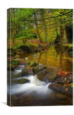 Porter Brook Falls in Endcliffe Park , Canvas Print