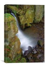 Looking Down Lumsdale Falls , Canvas Print