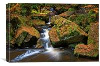 Wyming Brook Falls in Autumn, Canvas Print