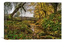 Low Bradfield Stream and Footbridge , Canvas Print
