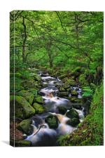 Looking Down Padley Gorge, Canvas Print