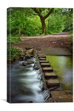 Porter Brook Stepping Stones & Falls              , Canvas Print