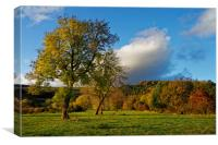 Hope Valley in Autumn                             , Canvas Print