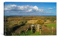 View across Studland and Godlington Heath         , Canvas Print