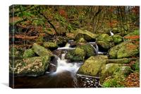 Padley Gorge in Autumn                      , Canvas Print