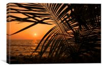 Tripical Sunset , Canvas Print