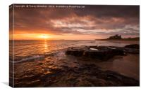 Bamburgh Gold , Canvas Print