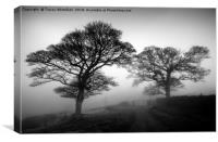 Silhouettes in the Mist, Canvas Print