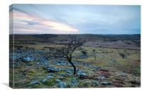 Sunset over Bodmin Moor, Canvas Print