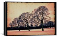 Winter arts in my park.., Canvas Print