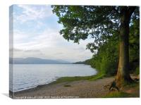 MOAT WOOD TREE BALLOCH LOCH LOMOND, Canvas Print