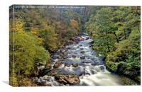 Autumn Afon Glaslyn, Canvas Print