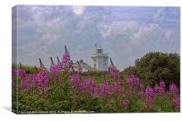 Purple flowers with Cromer lighthouse, Canvas Print