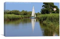 Sailing on the Norfolk Broads, Canvas Print