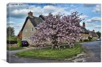 Ashby St Ledgers thatched cottages, Canvas Print