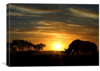 Rhino with a sunset behind, Canvas Print