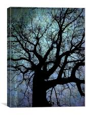 Oak Tree in Blue, Canvas Print