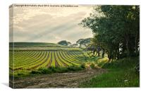 Crop and Countryside, Canvas Print