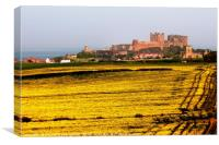 Bamburgh Castle behind fields of yellow rapeseed, Canvas Print