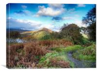 Conic Hill and Loch Lomond from Inchcailloch, Canvas Print