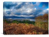 "Loch Lomond from the Inchcailloch ""Summit Trail"", Canvas Print"