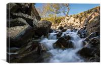 Levers Water Beck, Canvas Print