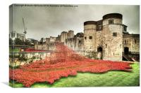 Poppies at the Tower , Canvas Print