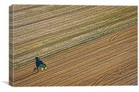 Ploughing, Canvas Print