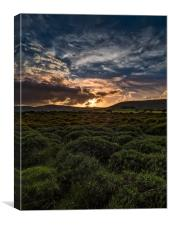Preseli Sunset, Canvas Print