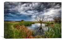 Waterlogged Tree Under A Storm Cloud, Canvas Print