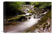 Stockghyll Force, Canvas Print