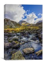 Tryfan Stream, Canvas Print
