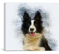 Border Collie Art, Canvas Print