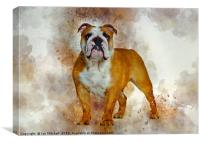 Bulldog Art, Canvas Print