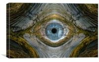 The all seeing eye of nature.., Canvas Print