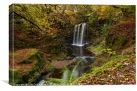 Dalcairney Falls in Autumn , Canvas Print