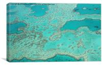 Looking down on the Great barrier reef , Canvas Print