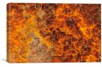 Rust in close up, Canvas Print