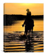 Equine Fun in the water, Canvas Print