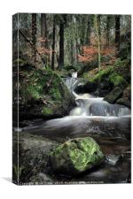 Cool Water , Canvas Print