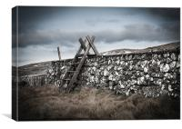 Irish Stile, Canvas Print