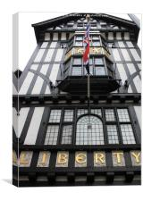 The Liberty Store, Canvas Print