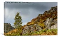Autumn in the Lake District, Canvas Print