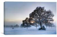 Sussex Snow, Canvas Print
