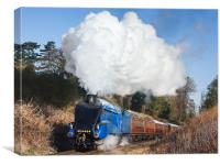 Steam train takes us back to the 1930s, Canvas Print