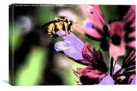 Bee and Flower, Canvas Print
